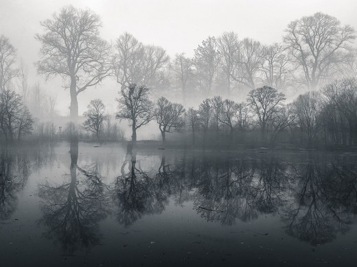 pond-poland-winter-morning_87535_990x742