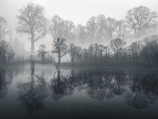 pond-poland-winter-morning_87535_990x742