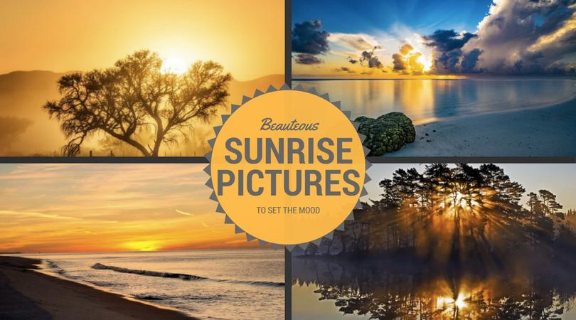 Beauteous Sunrise Pictures