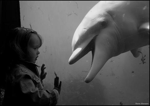 The encounter by Rene Mensen