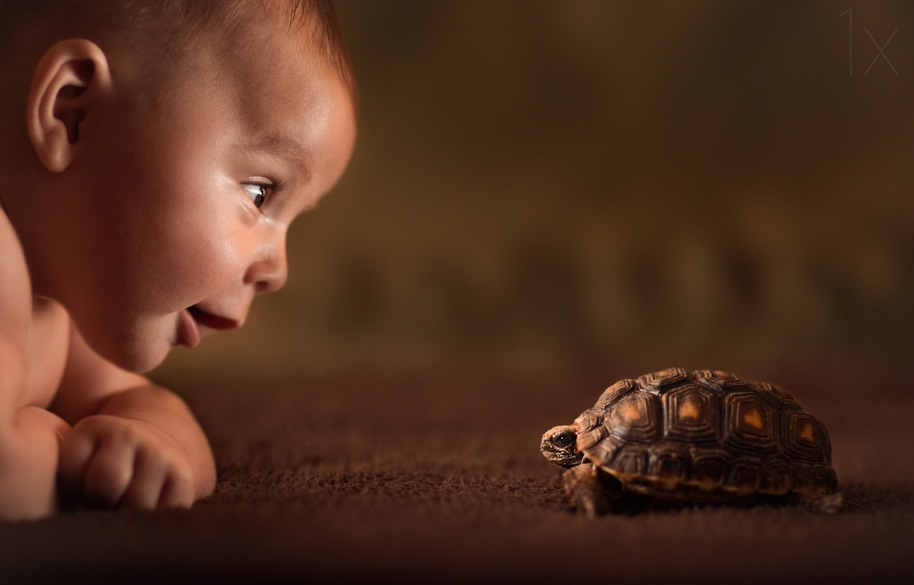 Adorable Pictures of Babies and their Pets