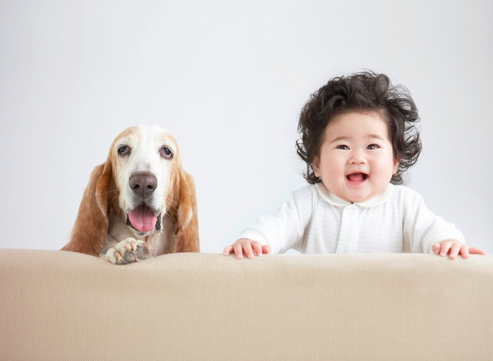 Baby and Dog Looking From Behind Sofa