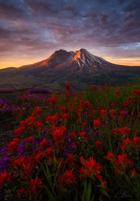 Mount Saint Helens, Washington