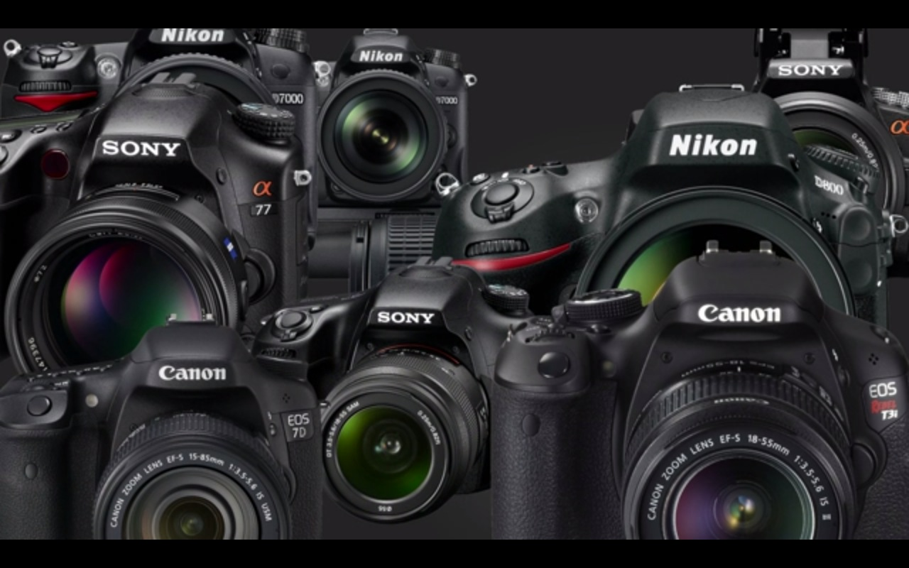 Learning Photography for Newbies with Cool Digital Photography