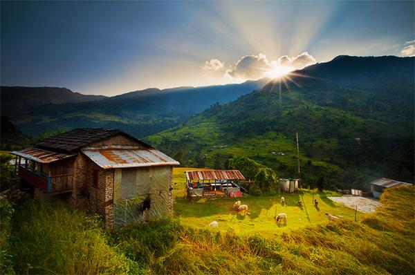 Rural_Dreams