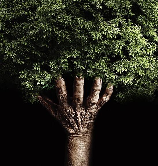 hand tree2