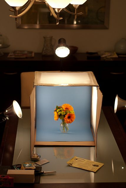 light box photography4
