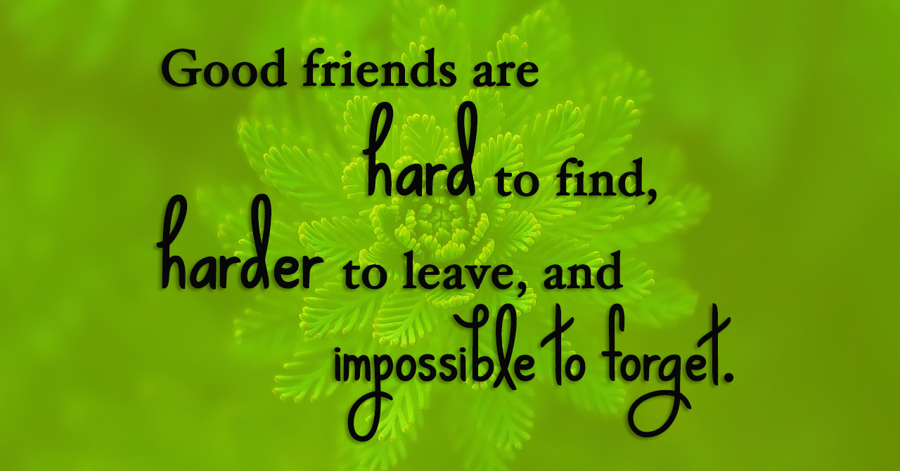 Beautiful Friendship Quotes www.pixshark.com - Images Galleries With A Bite!