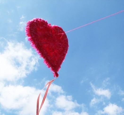 kite picture 2