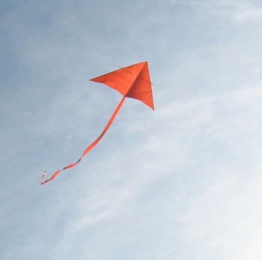 kite picture 9