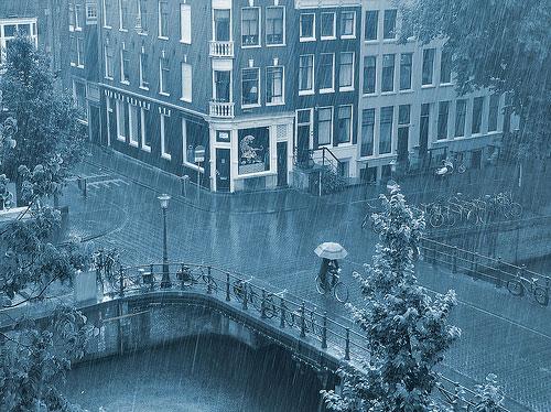 Rain photography 13