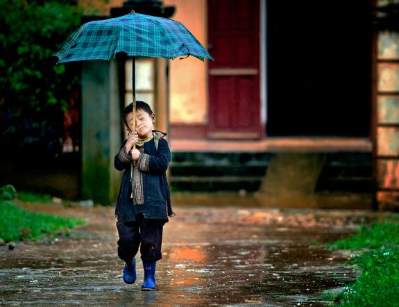 Rain photography 21