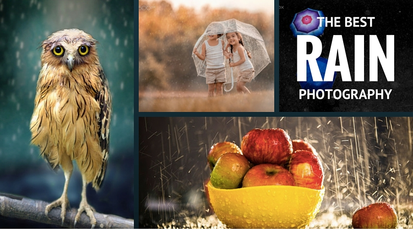 38 Of The Best Rain Photography Samples