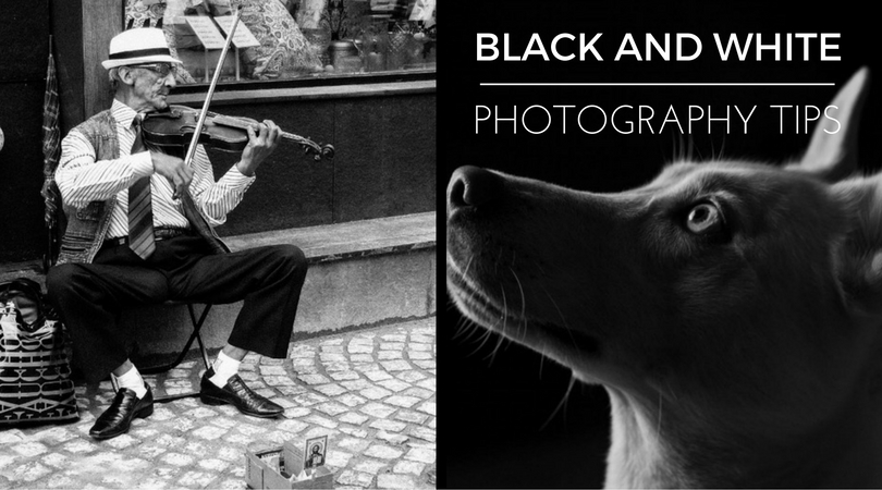 Black and White Photography Tips