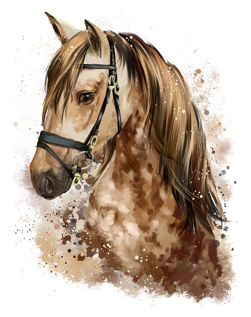 horse head watercolour